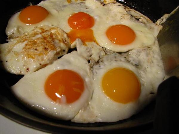Winter eggs