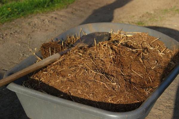 hen pecked compost/deep litter