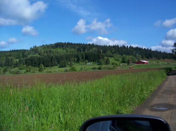 Belle Mare Farm