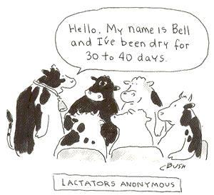 lactators anon