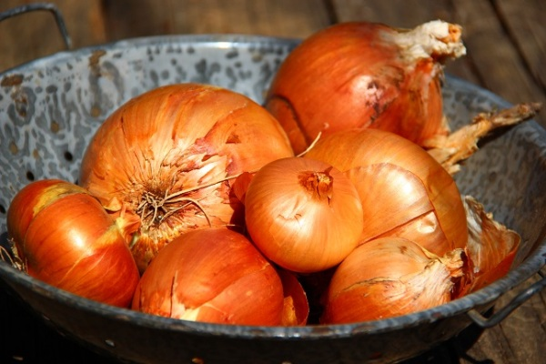 Last of the keeping onions  - June 20, 2014