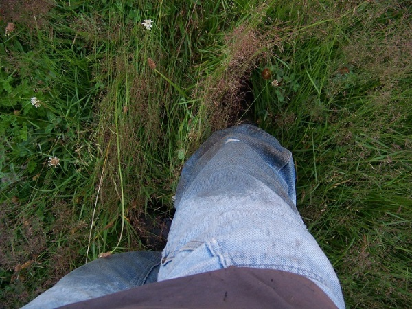 Wet plants, wet pants :(  Rubber boots not optional