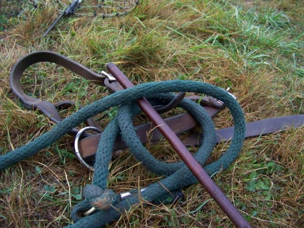 Jane's tack.  Homemade halter, lead rope and a persuasion stick