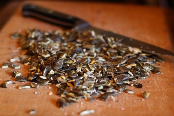 Styrian Naked Seed pumpkin seeds