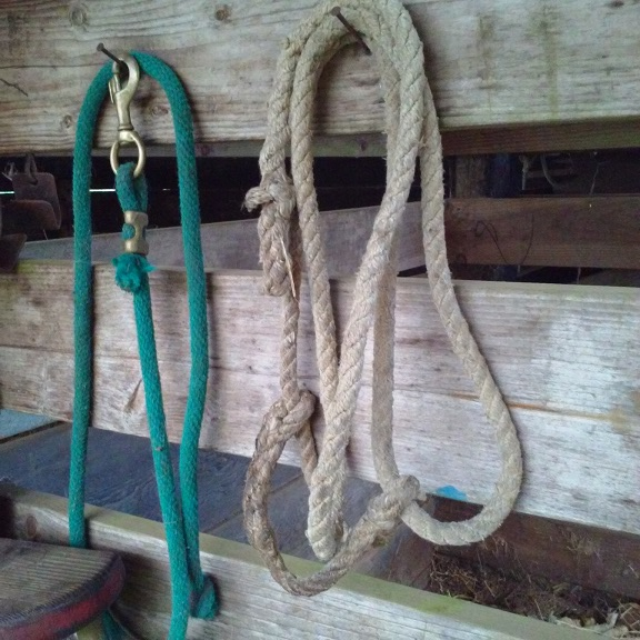 lead rope with swivel snap and soft rope adjustable halter