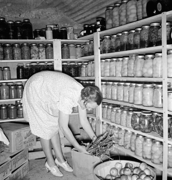 Eastern Oregon cellar, 1939, photo taken by Dorothea Lange, for the FSA